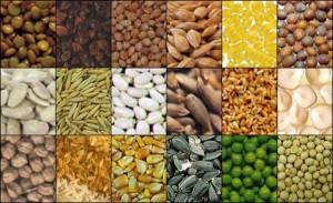 Sovranità alimentare, cos'è?