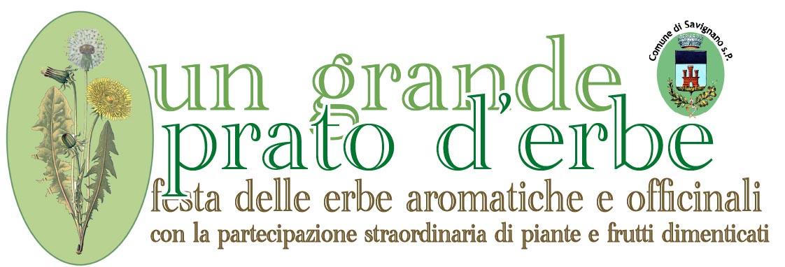 prato verde2(2)